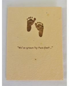 Green Field Grow-a-Note Cards-We've Grown By Two Feet