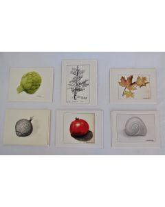 Karen Kaushansky Greeting Cards